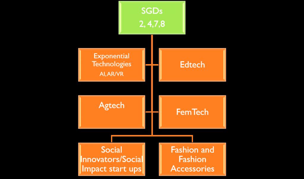 Innovation SL Incubation focus Segments